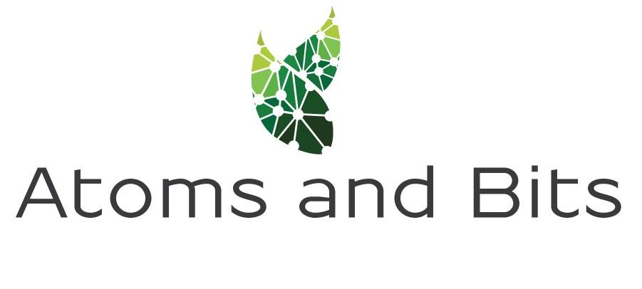 Atom & Bits IT company