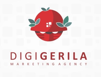 DigiGerila Marketing Agency